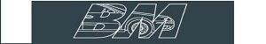 Bognor Motors Vehicle Solutions