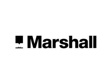 Marshall Volkswagen Van Centre Loughton