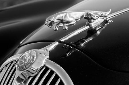 Jaguar Through the Years
