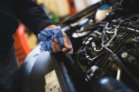 Where can I see my MOT and servicing history?