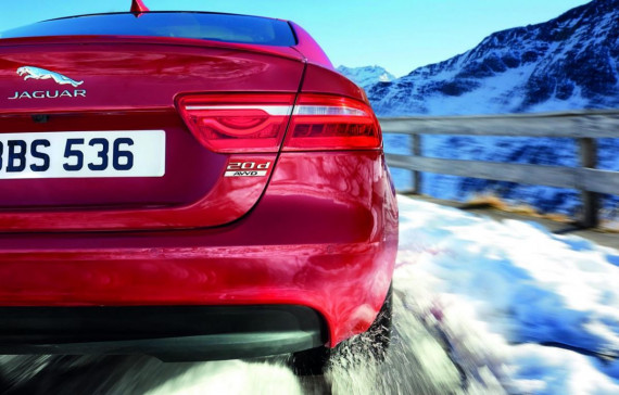 Jaguar on an icy road