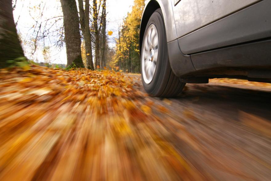 7 Autumn Driving Tips